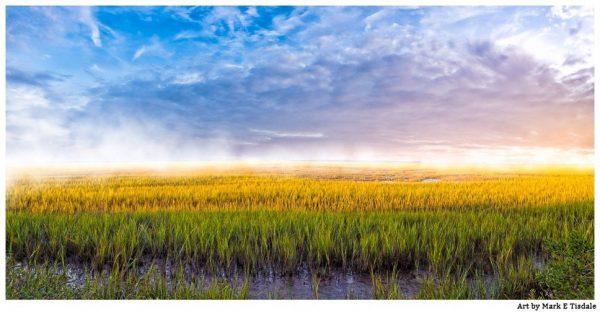 Tybee Island Coastal Marsh - Dramatic Landscape Panorama - Georgia Coast Print by Mark Tisdale