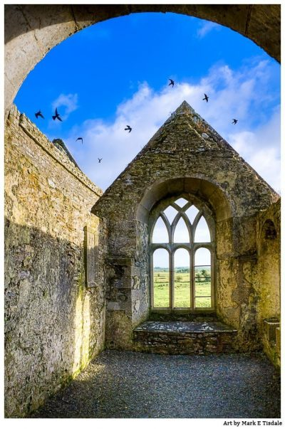 Birds In Flight Over the Irish Ruins of Ross Errilly Friary - Galway Print by Mark Tisdale