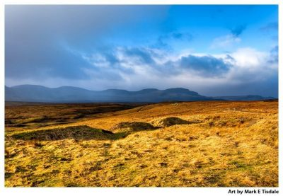 Golden grass landscape on the Isle of Skye - Scotland Print by Mark Tisdale