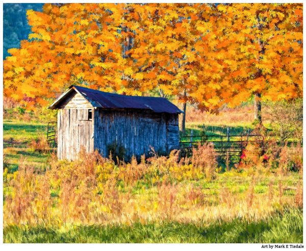 Rustic shed And Fall Colors - North Georgia Landscape Print by Mark Tisdale