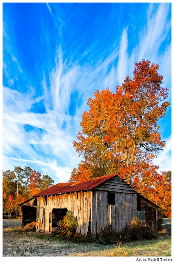Rustic wood farm shed - Fall in North Georgia Print by Mark Tisdale