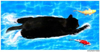 Surreal Cat Art - The Swimmer - Print by Mark Tisdale