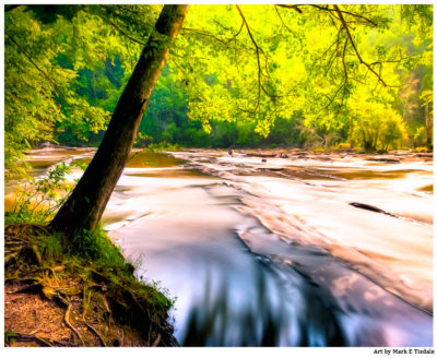 Sweetwater Creek - North Georgia Landscape Print by Mark Tisdale