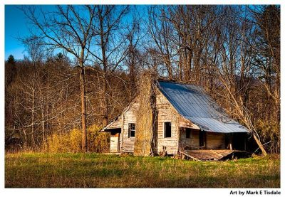 Rustic mountain cabin in Union County - North Georgia Print by Mark Tisdale